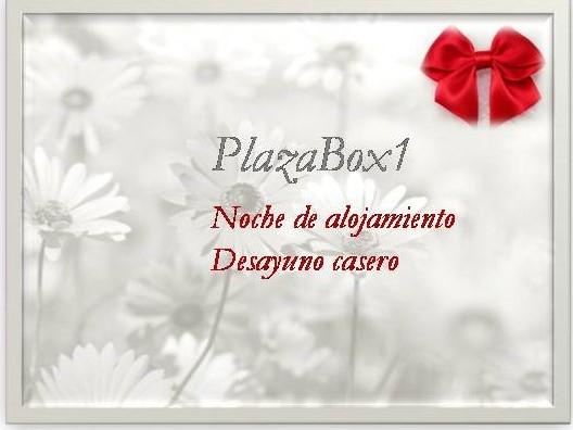 PLAZAbox1.jpg